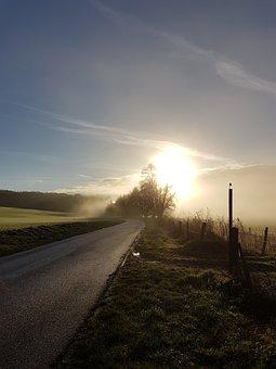 Mist, Morning, Field, Rural, Nature, Road, Landscape