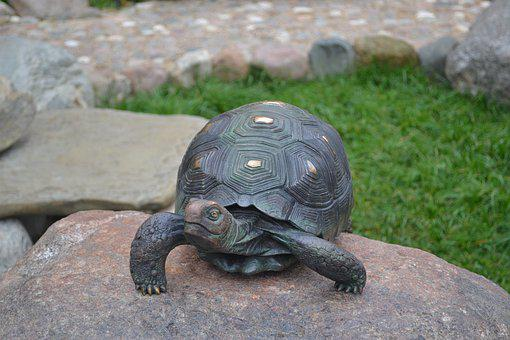Tortoise, Stone, Bronze, Nature, Sculpture, Park, Grass