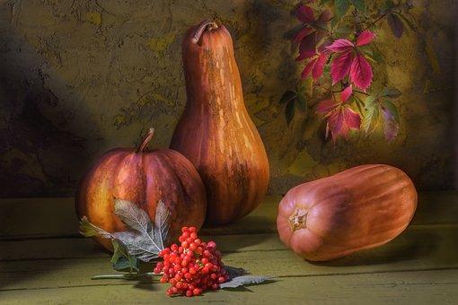 Pumpkin, Rowan, Autumn, Vitamins, Still Life, Clearance