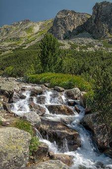 Tatry, Vysoké Tatry, Nature, Slovakia, Top, Mountains