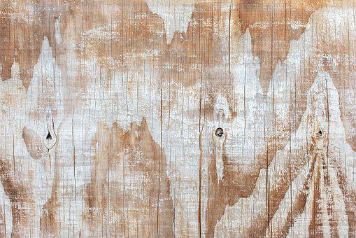Tree, Texture, Wood, Background, Boards