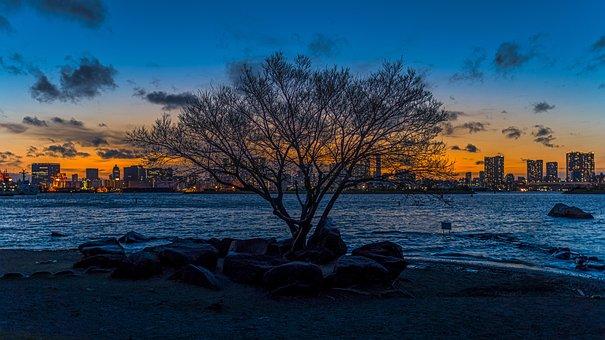 Tokyo, Sunset, City, Sky, Landscape, Architecture