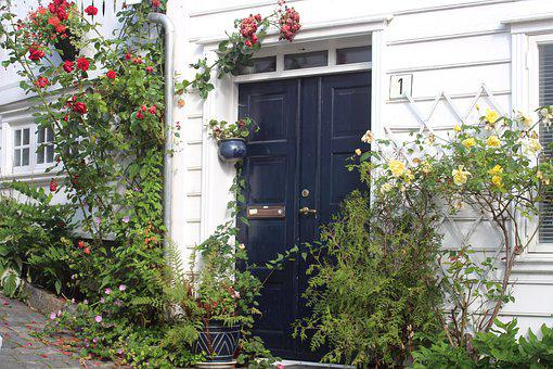 Norway, Stavanger, Door, Flower, Colorful, Scandinavia
