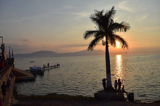 Palm Tree, Sunset, Lake, Chapala, Jalisco, Christmas
