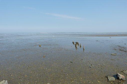 East Frisia, Wide, Landscape, Wadden Sea, Nature