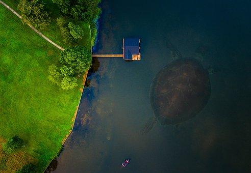 Turtle, River, Pond, Lake, Monster, Prehistoric, Boat
