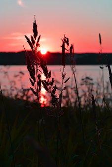Sunset, Grass, Twilight, Evening, Sky, Nature