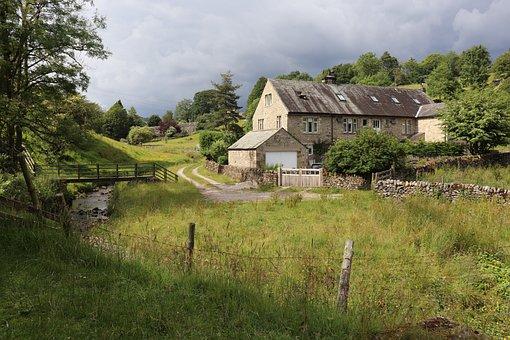 Yorkshire, Landscape, Nature, England, Uk, Grass, Tree