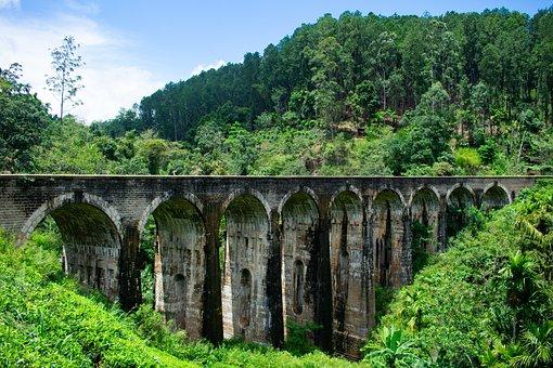 Bridge, Train, Green, Road, Mountain, Forrest