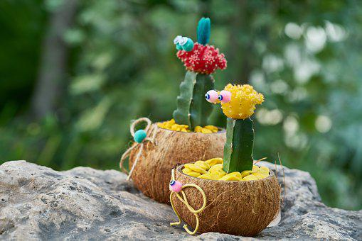 Cactus, Plant, Flowerpot, Ornament, Nature, Green, Dea