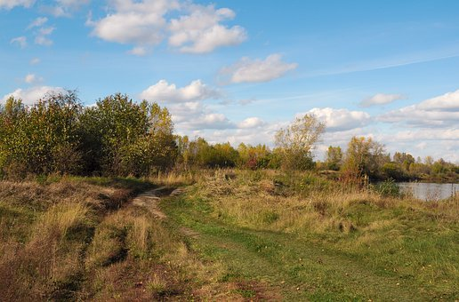 Landscape, Autumn, Trail, Forest, Nature, Grass, Haying