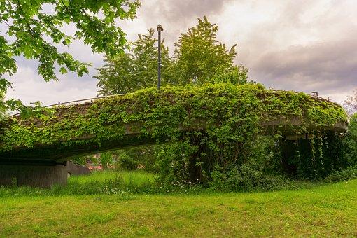 Bridge, Concrete, Branches, Leafs, Sky, Clouds, Grass