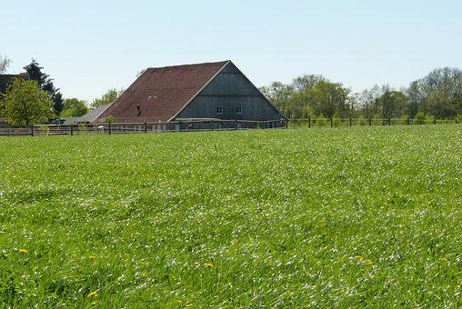 House, Nature, Hof, Landscape, Farm, County
