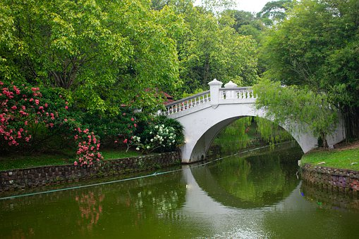 Bridge, River, Green, Water, London, Architecture, City