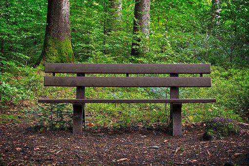 Bench, Forest, Bank, Nature, Break, Rest, Seat, Idyll