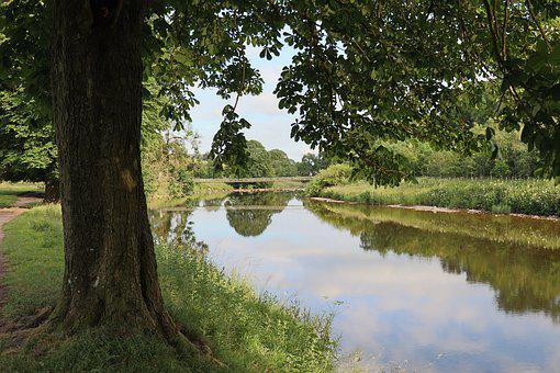River, Tree, Rest, Landscape, Nature, Forest, Water