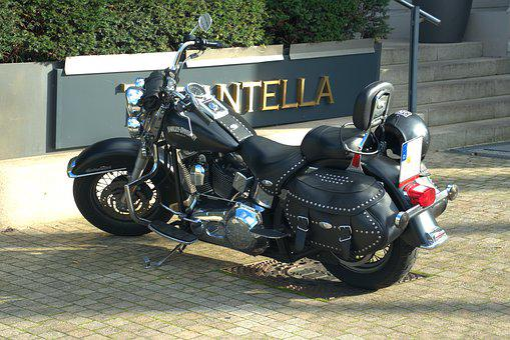 Motorcycle, Harley, Wheel, Vehicle, Motor, Machine