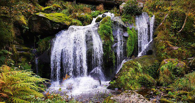 Waterfall, Black Forest, Hiking, Recovery, Idyll, Relax
