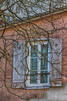 Window, Winter, House, Cold, Tree, Branches, Shutters