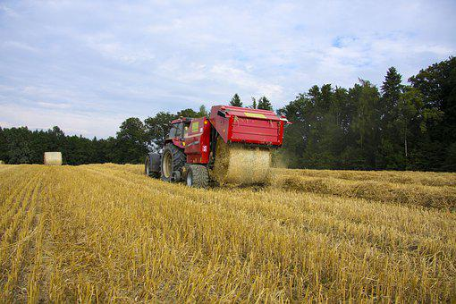 Agriculture, Field, Tractor, Cereals, Summer, Cornfield