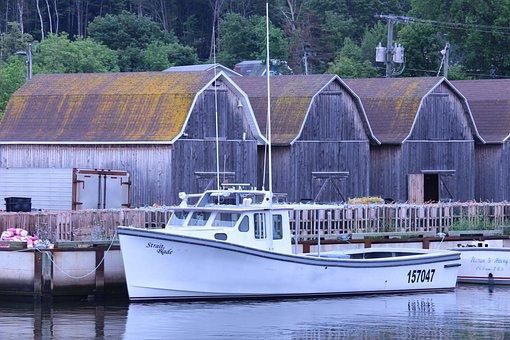 Fishing Boats, Lobster, Boat, Fishing, Harbor, Ocean