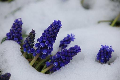 The Beginning Of Spring, Winter Blast, Frühlingsanfang