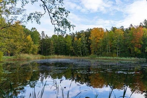 Sweden, Gränna, Grännaberg, Lake, Mirroring, Autumn