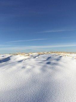 Denmark, Skagen, Branch, Winter, Snow, Sol, Sunshine