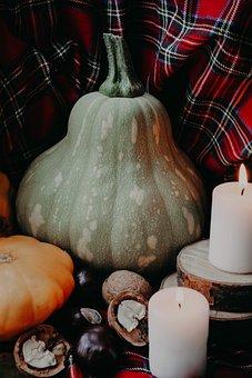 Pumpkin, Candles, Comfort, Chestnuts, Nuts, Orange