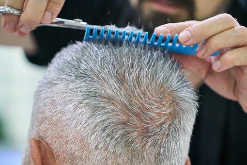 Male, Hair, Cutting, Comb, Scissors, Barber, Portrait
