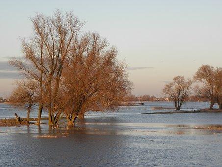 Water, District, Floodplain, River, Flood, Autumn