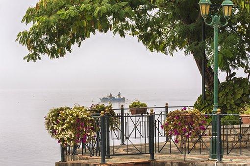 Fog, Autumn, Foggy, Landscape, Forest, Trees, Mood