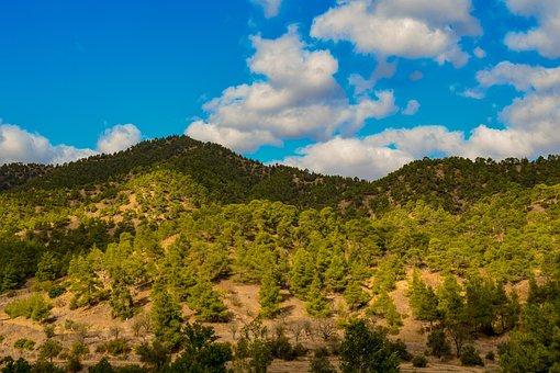 Troodos Mountain, Range, Scenery, Mountains, Wilderness