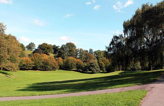 Park, Greenwich, England, Nature, Landscape, Heaven