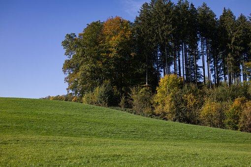 Autumn Mood, Bavaria, Nature, Landscape