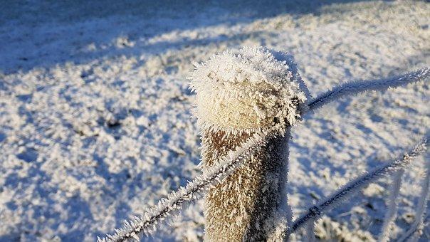 Winter, Snow, Eiskristalle, Pasture Fence, Wire