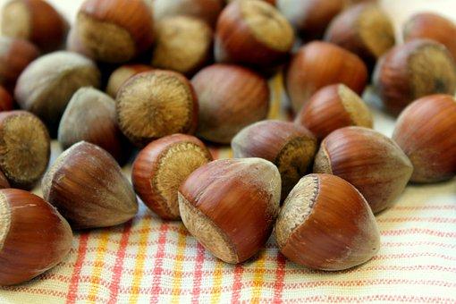 Nuts, Hazelnuts, Brown, Food, Eat, Snacks, Fruit, Hazel