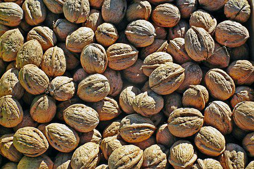 Nuts, Italian, Autumn, Food, Fruit, Decorative, Healthy