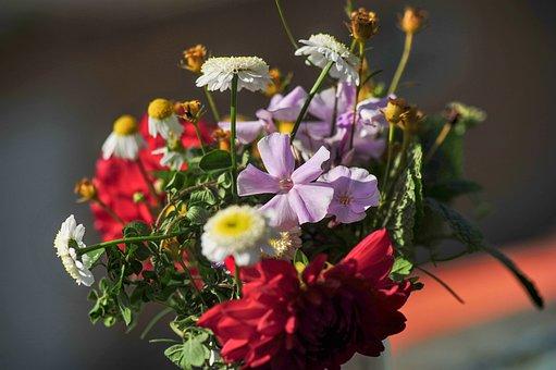 Autumn Flowers, Bouquet, Garden Flowers, Decoration