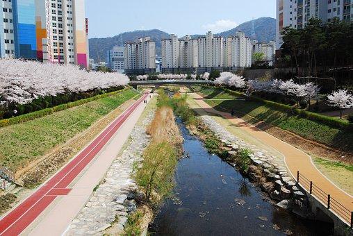 Rivers, Keep Your City, Busan Metropolitan City