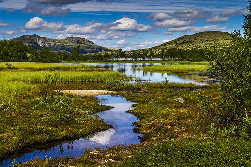 The Nature Of The, Landscape, Mountain, Water, Marsh