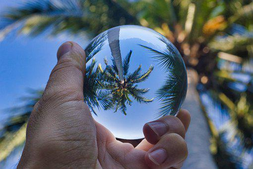 Palm Tree, Paradise, Palms, Beach, Island, Tropical