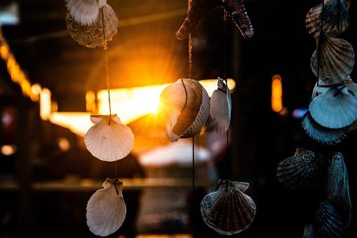Sun, Summer, Nature, Sea, Lifestyle, Sunbeam, Sunset