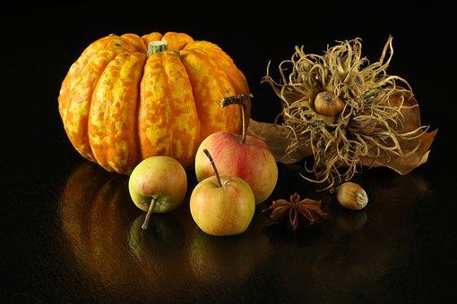 Autumn, Pumpkin, Apples, Thanksgiving, Orange, Harvest