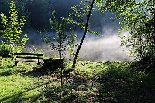 Autumn, Fog, Silent, Bank, Lake, Green, Water, Rest