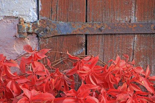 Old, Door, Goal, Door Hardware, Hinge, Leaves, Autumn