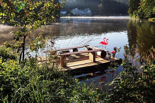 Autumn, Lake, Water, Morning, Flamingo, Raft, Sun