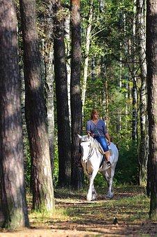 Girl, Horse, Forest, Park, On Horseback, Beauty, Stroll