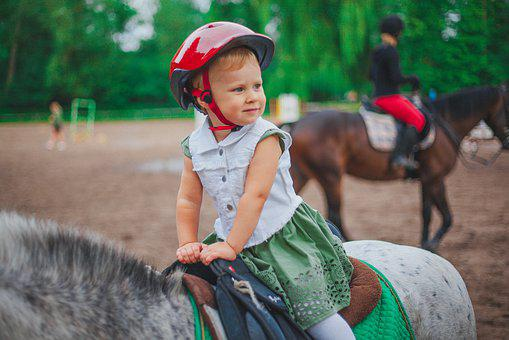Baby, Horse, Jumping, Pony, Nature, In The Summer Of