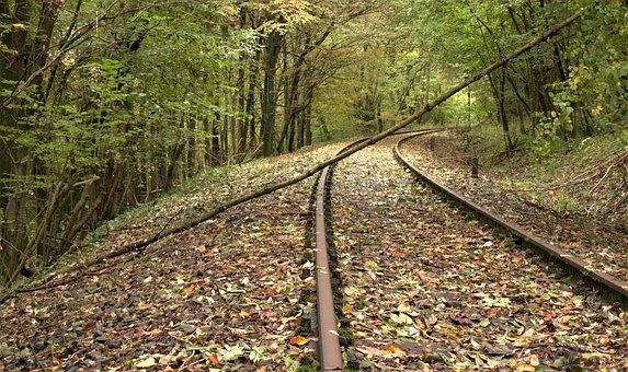 Ast On Track, Railway, Leaves, Autumn, Nature